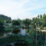 都市の墓地を植物園と緑の公共スペースに変える