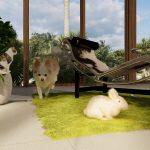 癒やしの空間をLumionで作成 愛犬や愛猫をLumionに招待しよう